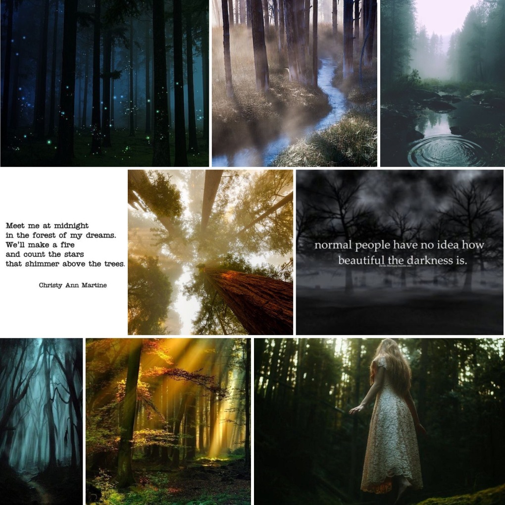 ironwood forest mood board
